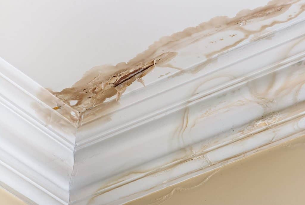 4-common-causes-of-leaking-roofs